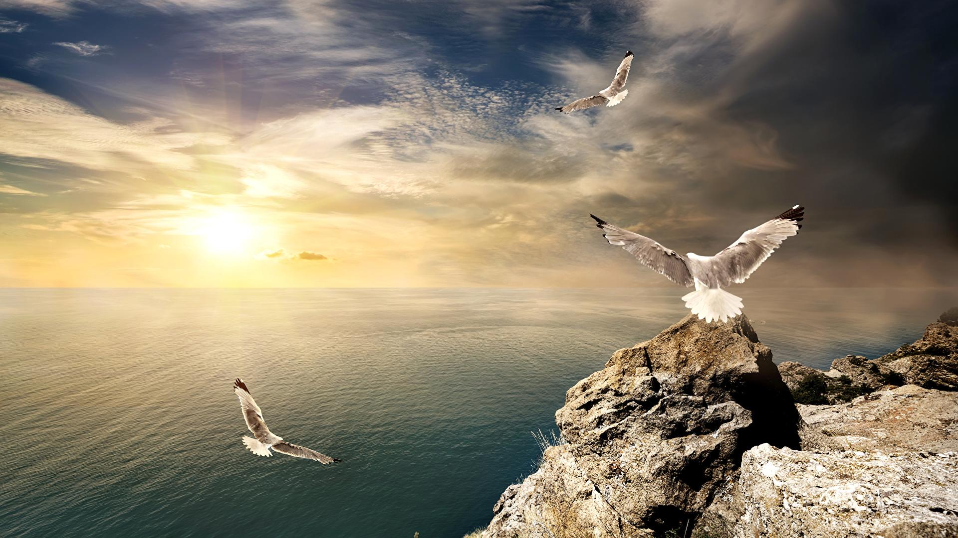 Фото берега моря на закате