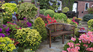 Картинка Англия Сады Скамейка Кустов Walsall Garden Природа