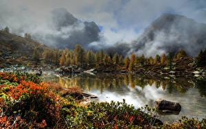 Картинки Швейцария Озеро Горы Камни Осень Туман Кусты Massersee Wallis Природа