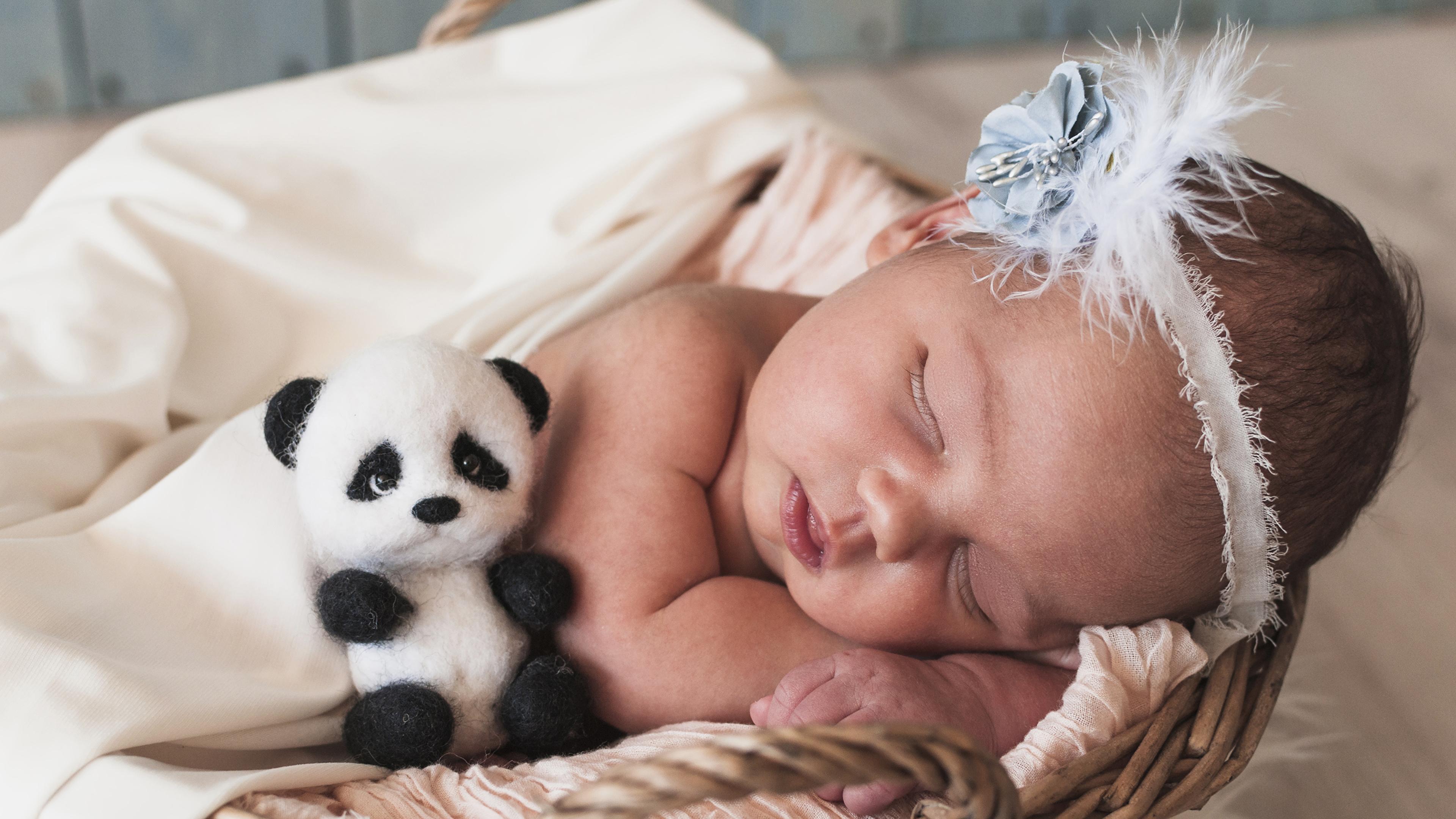 Фотографии младенец Дети сон Мишки 3840x2160 младенца Младенцы грудной ребёнок ребёнок спят Спит спящий Плюшевый мишка