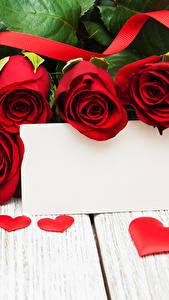 Фотографии День святого Валентина Розы Доски Красный Шаблон поздравительной открытки Сердечко Ленточка цветок
