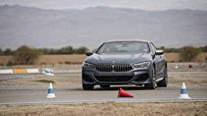 Фотографии BMW Серый 2018 8-Series 2019 M850i xDrive 8er G15