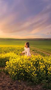 Фотография Пейзаж Рассветы и закаты Поля Рапс Лучи света Девочки Природа