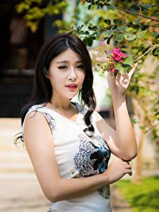 Фотография Азиатка На ветке Платье Рука Брюнетки Взгляд молодая женщина