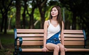 Обои Азиатки Размытый фон Скамейка Сидящие молодая женщина