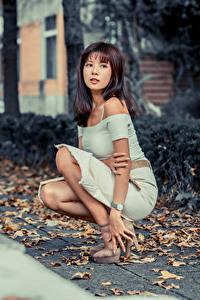 Фотография Азиаты Сидящие Платье Лист Смотрит