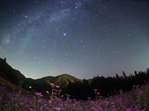 Фотографии Япония Небо Звезды Гора Луга Ночь Nagano Природа