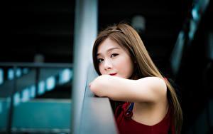 Фото Азиаты Боке Взгляд Шатенка Милый Девушки
