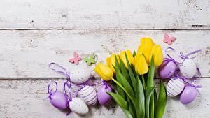 Картинки Тюльпаны Пасха Яйцами Доски Цветы