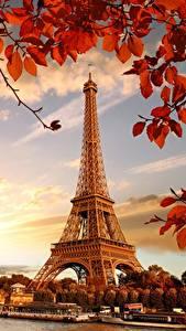 Фотография Франция Осень Эйфелева башня Париж Листья Города