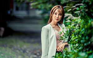 Фотографии Азиатки Боке Ветвь Шатенки пиджак девушка
