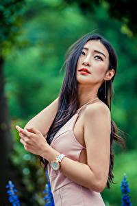 Фотографии Азиатка Боке Позирует Платье Руки Брюнеток Девушки