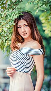 Фотография Азиатка Шатенка Ветки Смотрят Боке девушка