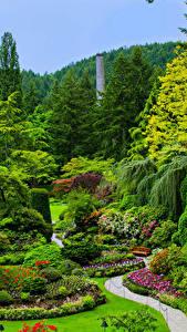 Фото Канада Сады Газон Кустов Дерева Butchart Gardens Victoria Природа