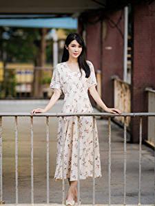 Картинки Азиатка Боке Платья Рука Брюнетки Забор молодые женщины