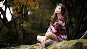Фотография Азиатки Позирует Сидящие Шатенки Миленькие Боке