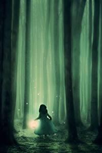 Фото Леса Ночные Туман Лампа Ствол дерева Девочки Фантастика