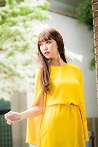 Картинки Азиатка Боке Платье Шатенка Взгляд молодая женщина