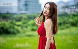 Фотография Азиаты Шатенки Платья Смотрят Боке девушка