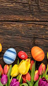 Фотографии Праздники Пасха Тюльпаны Доски Яйцами цветок