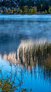 Фотографии Штаты Озеро Калифорнии June Lake Природа