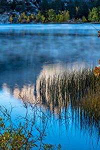 Фотографии Штаты Озеро Калифорния June Lake Природа