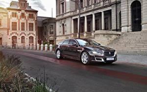 Обои Ягуар Бордовая Металлик 2019 XJ50 Автомобили