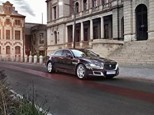 Обои Ягуар Бордовый Металлик 2019 XJ50 Автомобили
