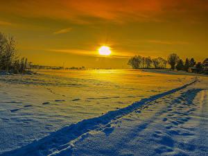 Фотография Зимние Рассветы и закаты Снег Солнце