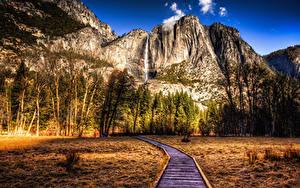 Фотографии Штаты Парки Горы Осенние Пейзаж Калифорния Йосемити Деревья HDRI Природа