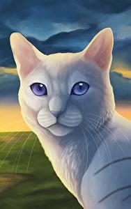 Фотографии Коты Рисованные Белые Животные