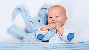 Картинка Зайцы Игрушка Младенец