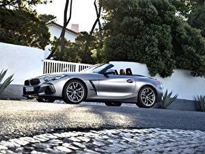 Фотография BMW Серебряный Сбоку Родстер M40i Z4 2019 G29