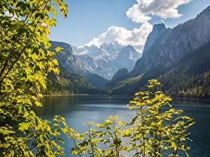 Картинки Австрия Горы Озеро Пейзаж Ветки Скала Dachstein, Gosausee, Gosau
