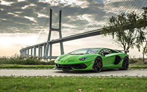 Фото Lamborghini Салатовый 2018 Aventador SVJ Worldwide Машины