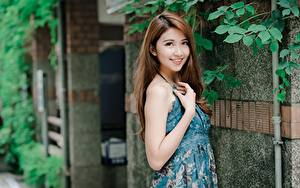 Картинки Азиатки Позирует Улыбается Шатенки девушка