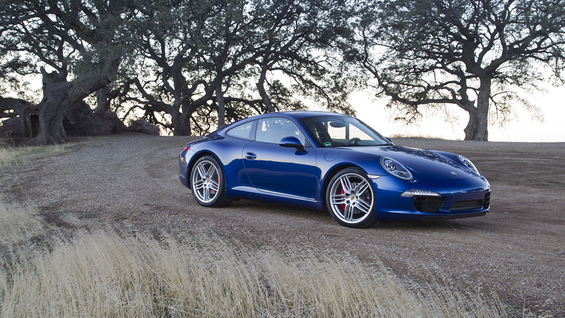 Обои для рабочего стола Порше 2011 911 Carrera S синих авто Металлик 1920x1080 Porsche Синий синие синяя машина машины автомобиль Автомобили
