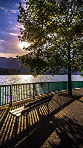 Фотография Италия Рассветы и закаты Озеро Вечер Забор Деревья Скамья Тень Como Природа