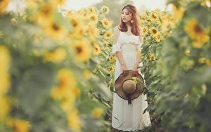 Картинки Подсолнечник Азиатка Размытый фон Платья Шляпы молодая женщина