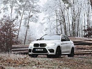 Фотография БМВ Белая X6M авто