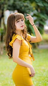 Картинка Азиаты Платье Размытый фон Позирует Рука Шатенка молодые женщины
