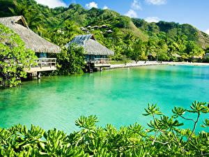 Фотографии Тропики Здания Берег Холмы Caribbean