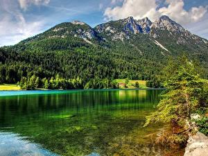 Фото Горы Леса Озеро Австрия Пейзаж Lake Hintersteinerгор, Tirol