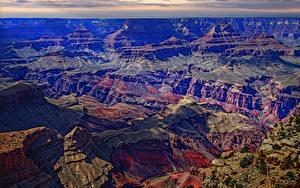 Картинки Гранд-Каньон парк США Парки Горы Мох
