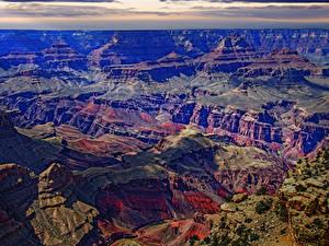 Картинки Гранд-Каньон парк США Парки Горы Мох Природа