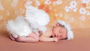 Обои Ангелы Грудной ребёнок Спят Крылья
