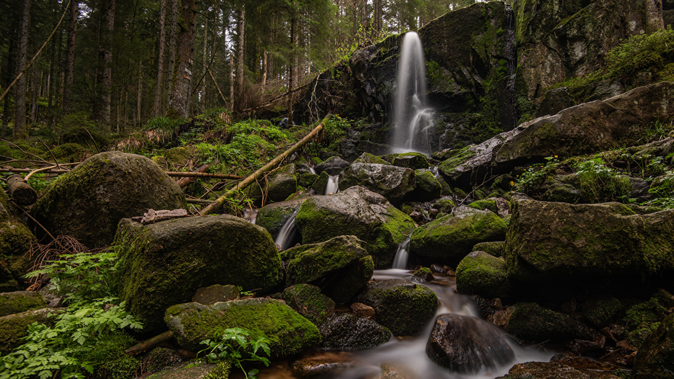 Фотографии Франция Cascade de Merelle скалы Природа Водопады лес мха Камни 1366x768 Утес Скала скале Леса Мох мхом Камень