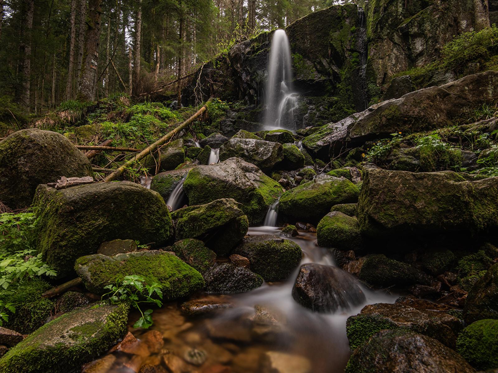 Фотографии Франция Cascade de Merelle скале Природа Водопады Леса Мох Камни 1600x1200 Утес скалы Скала мха мхом Камень