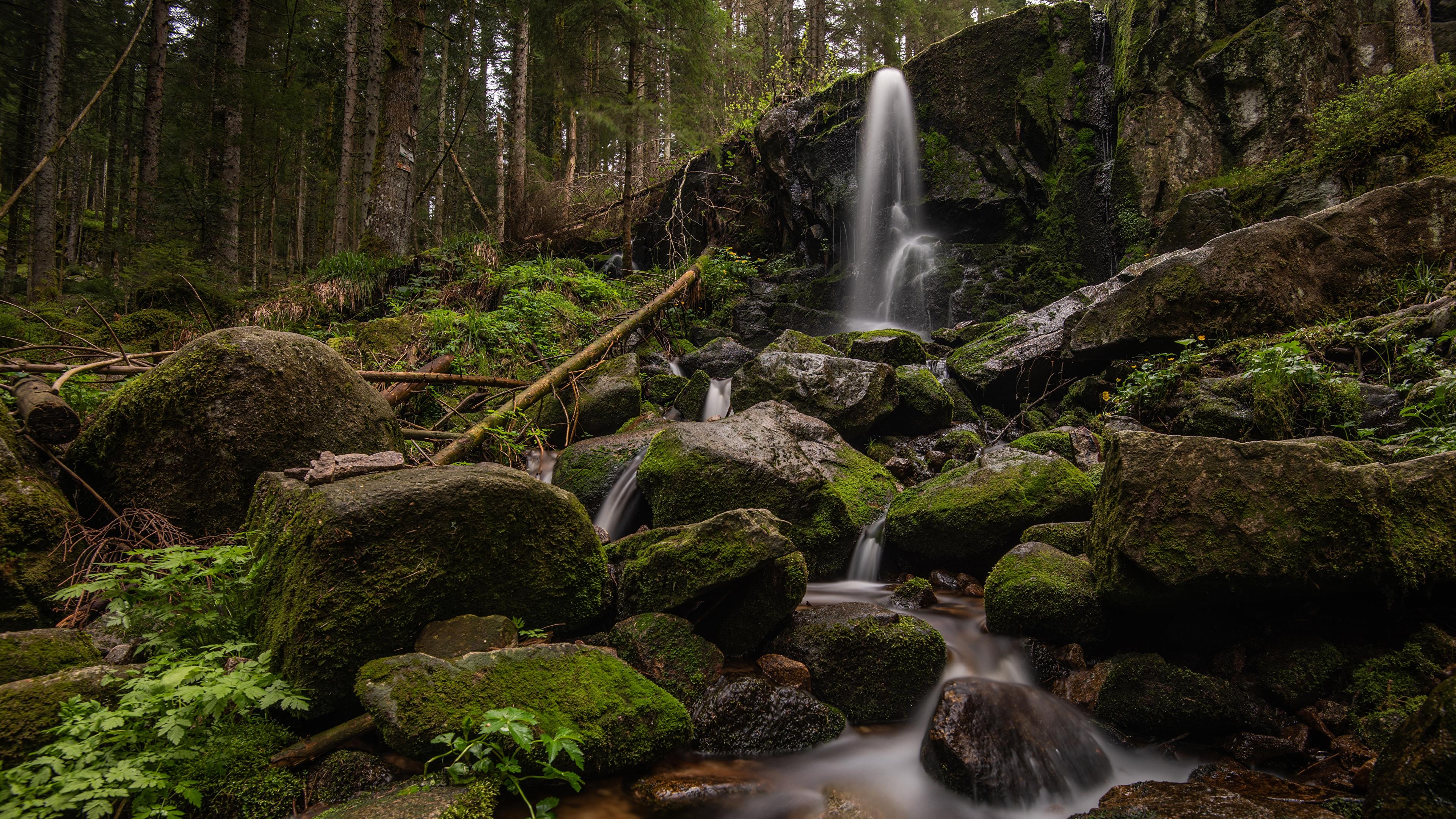 Фотографии Франция Cascade de Merelle скале Природа Водопады Леса Мох Камни 3840x2160 Утес скалы Скала мха мхом Камень