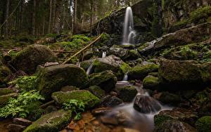 Фотографии Франция Камень Водопады Лес Скала Мох Cascade de Merelle Природа